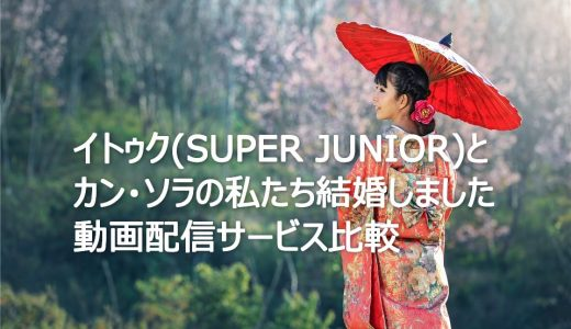 【韓国バラエティー】イトゥク(SUPER JUNIOR)とカン・ソラの私たち結婚しましたを見るならこの動画配信サービスを選ぼう